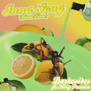Darkovibes ft. King Promise - Inna Song (Gin & Lime)