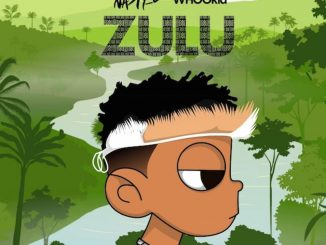 Album Zulu Mixtape by Nasty C