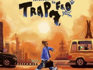 Yung6ix - Introduction To Trapfro (FULL ALBUM)