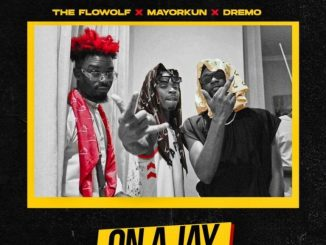 The Flowolf, Mayorkun, Dremo, Fresh VDM - On A Jay