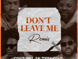 Josh2funny ft. Falz, Vector, Magnito - Don't Leave Me (Remix)