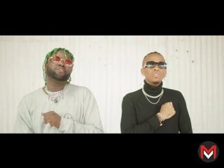VIDEO Skales – Badman Love (Remix) ft. Tekno