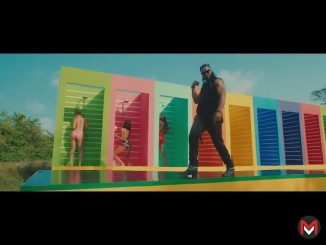 VIDEO: Flavour - Looking Nyash