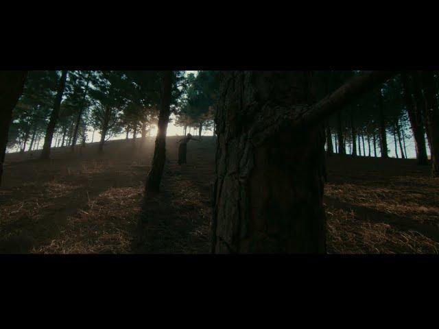 VIDEO: Fireboy DML - Champ ft. D Smoke